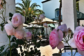 Picture Avontuur Estate Restaurant in Somerset West, Helderberg, Western Cape, South Africa