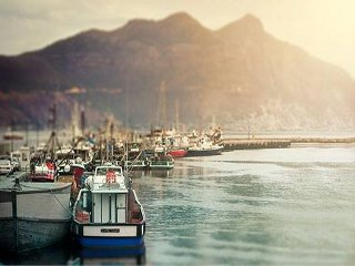 Picture Bay Harbour Market in Hout Bay, Atlantic Seaboard, Cape Town, Western Cape, South Africa