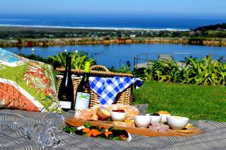 Picture Cape Point Vineyards in Noordhoek, False Bay, Cape Town, Western Cape, South Africa