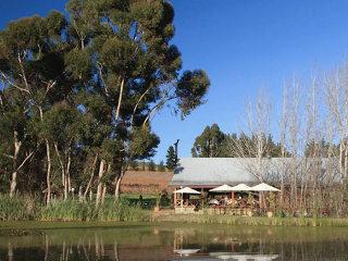 Picture Floreal Brasserie at Marianne Wine Farm in Stellenbosch, Cape Winelands, Western Cape, South Africa