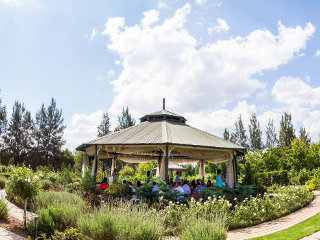 Picture Rosemary Hill in Boschkop, Pretoria East, Pretoria / Tshwane, Gauteng, South Africa