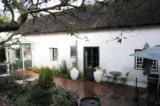 Picture The Wild Fig in Mowbray, Southern Suburbs (CPT), Cape Town, Western Cape, South Africa