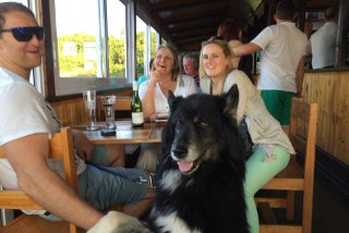Picture Ziggy's Rock & Reggae Bar in Summerstrand, Port Elizabeth, Cacadu (Sarah Baartman), Eastern Cape, South Africa