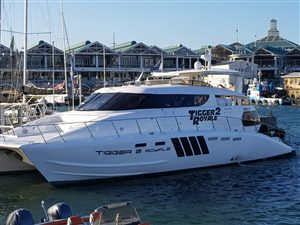 Tigger 2 Exclusive Cruises